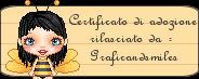 certificato di adozione